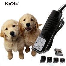 Tondeuse de poils pour chiens, outil de toilettage professionnel, coupe cheveux, Rechargeable, Machine de coupe cheveux pour chiens, EU
