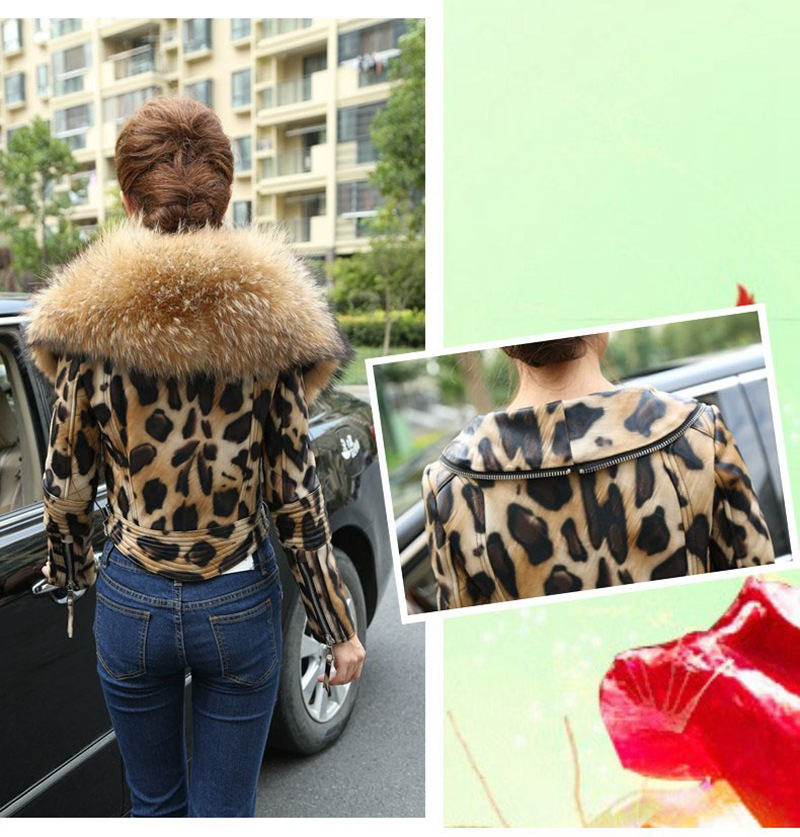 leopard color jacket genuine sheepskin (2)