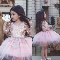Dollcake аппликация для девочек в цветочек платья одежда с длинным рукавом особых поводов для свадьбы праздничное платье для детей по колено ве