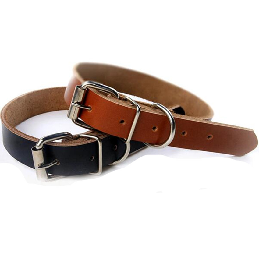 Leather Dog Collars For Small Dogs
