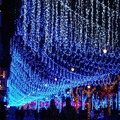 220V EU Plug 50M 300 LED Christmas Lights Wedding Party Festival New Year Led Holiday Lights White Twinkle Fairy Lights R20