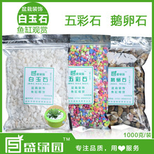 1000g/lot colorful garden stone…