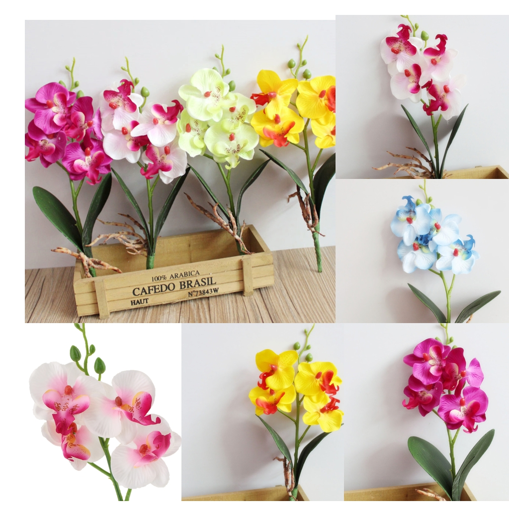 Hot Sale Single 13 Phalaenopsis Orchid Artificial Branches Real