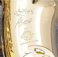SELMER AXOS SELES Alto E Flat Saxophone High Quality Brass Brand Woodwinds Instrument Gold Plated With