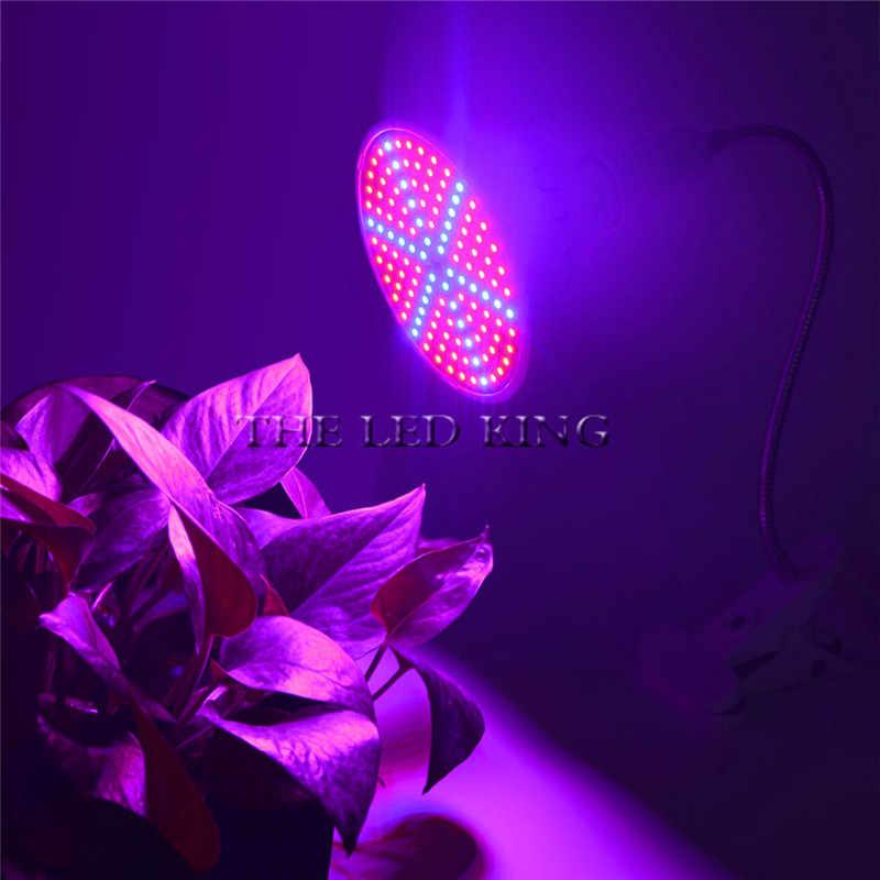 50 W Led Grow Light Bulbs Lampada Fiore Pianta sistema di coltura idroponica serra Orticoltura luci per Interno + Supporto Da Tavolo Clip