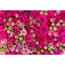 Laeacco Spring Blooming Flowers Wall Wedding Stage Photography Background Customized Photographic Backdrops For Photo Studio
