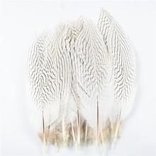 10 шт./лот 10-30 см 4-12 дюймов Натуральные серебряные перья из хвоста фазана для рукоделия Свадебные украшения серебряные перья фазана