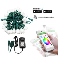 Outdoor Christmas String RGB Led Fairy Lights Halloween Wedding Flower Holiday Decoration For Home Bluetooth APP