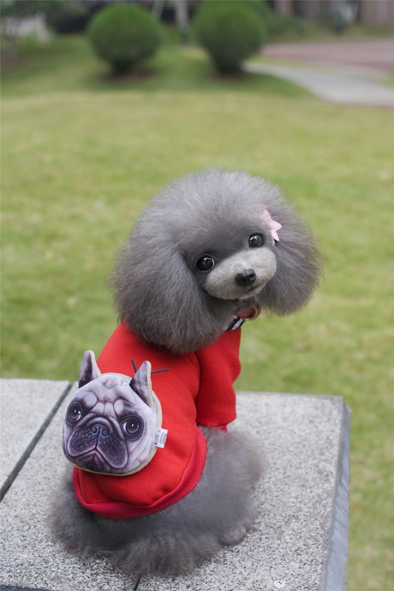 A35 kutya őszi téli pamut és bársony pulóverek - táska design - Pet termékek - Fénykép 1