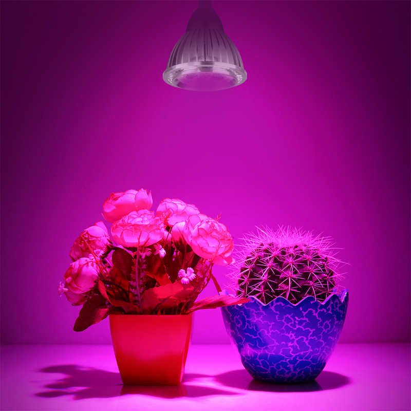 5W Clip LED Grow Light Bulb 5 LEDs Hydroponic Plant Growing Lights with Power Switch Red & Blue for Garden Greenhouse AC 85~265V