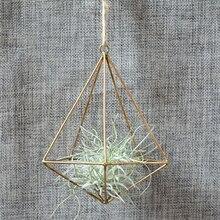 Pot-Rack Terrarium-Box Flower-Container Geometric Moss Hanging Metal Vintage Tillandsia