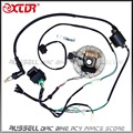 WIRE HARNESS CDI Coil MAGNETO STATOR Kill Switch Spark Plug 125cc PitDIRT BIKE