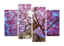 New Modular Pictures Cherry blossoms modular paintings Wall Art Printed On Canvas Wall Pictures For Living Room 4 pcs/set with w