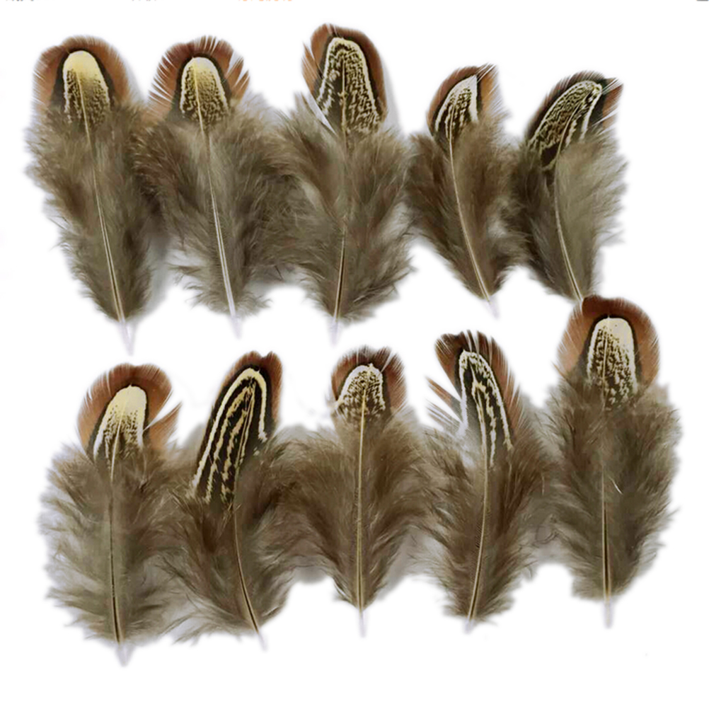 How to clean pheasant feathers - Aliexpress Com Buy 200pcs Pack Natural Pheasant Feathers Decorative Diy For Mask Jewelry Craft Dress Making Bulk Sale On Sale From Reliable Natural