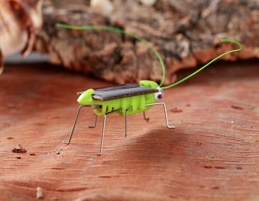Toy Science Grasshopper Insect Solar-Energy Education New Whole-Maggots Enlightenment