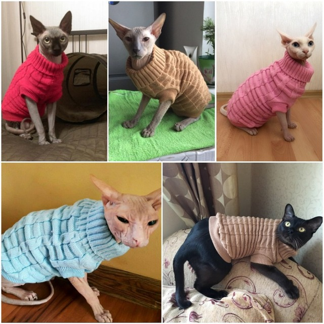 US $6 04 45% OFF| Sphinx Cat Sweater Coat Spagetti Warm Autumn Winter Dog  Cat Sweater Pet Jumper Cat Clothes For Small Cat Dog Pets-in Cat Clothing