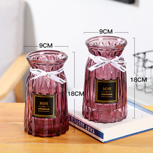 2Pcs Mordern Flower Glass Vase Water Culture Plant Simple Creative Mini Bottle Ins Style  for Home Decor
