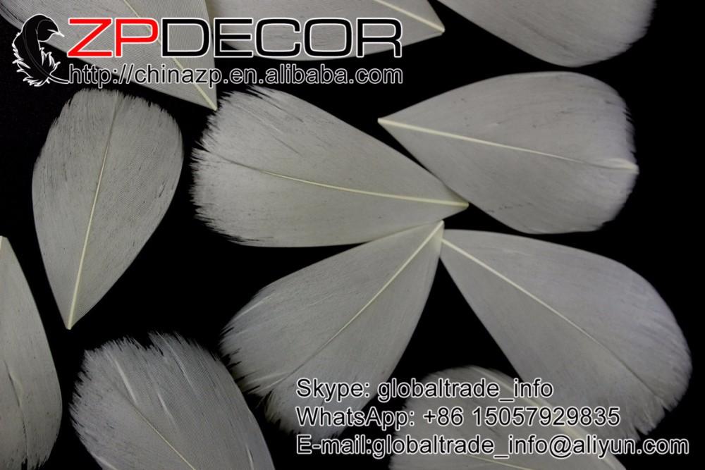 beige goose feather petal  (1)