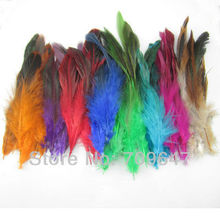 Promotion!500pcs/lot Natural Saddle Badger Rooster feathers Mixed colors 4-6 inches long freeshipping