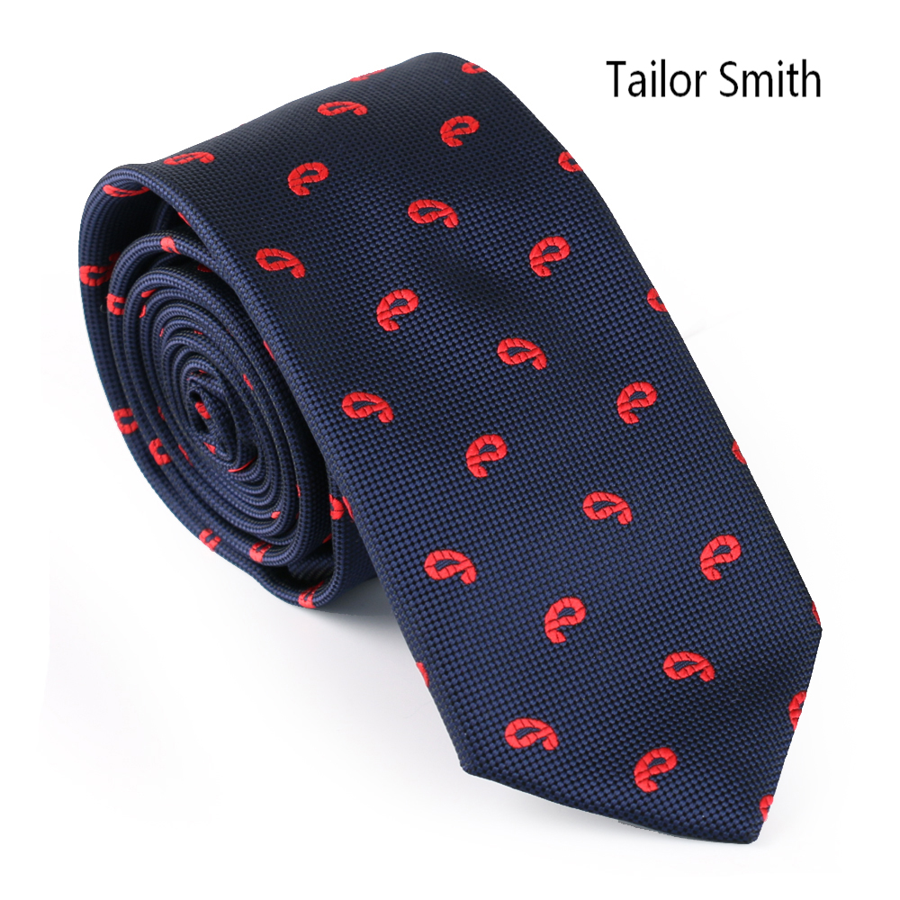 Tailor Smith Mens Fashion Paisley Designer Tie Microfiber