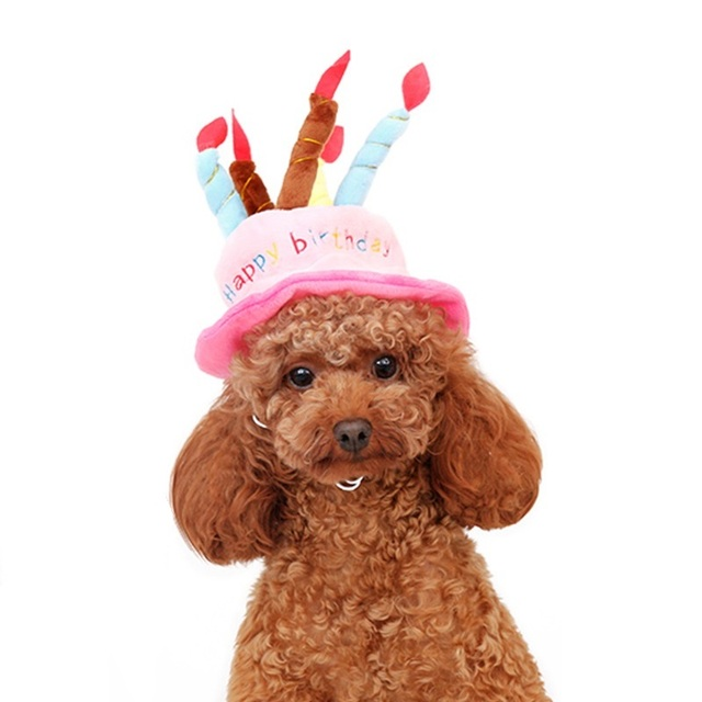 Pet Dog Birthday Hat Christmas Halloween Party Cat Cute Hats
