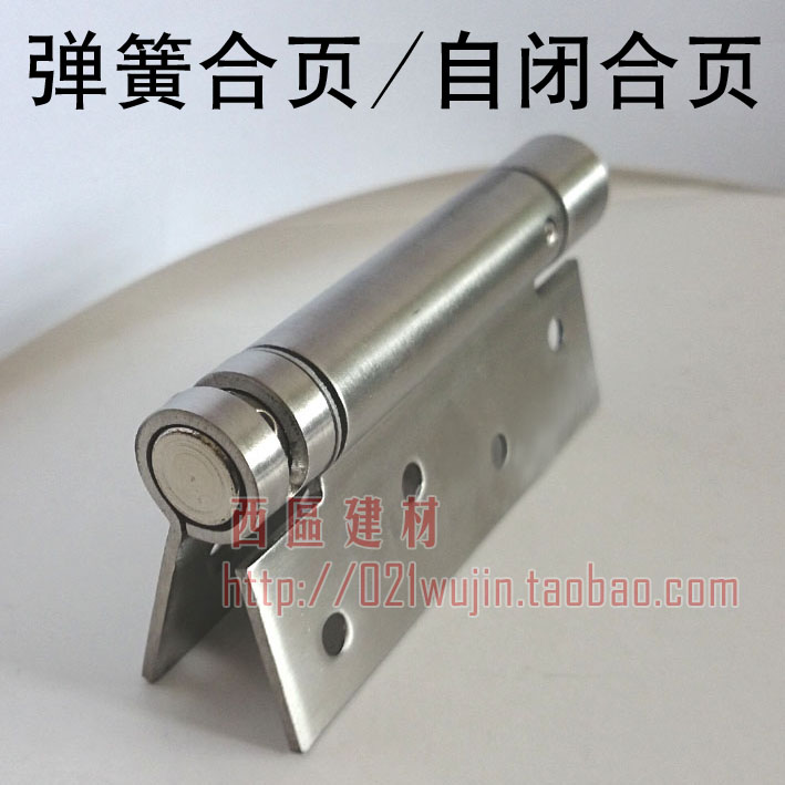 Cheap Stainless Steel Spring Hinge Invisible Door Self