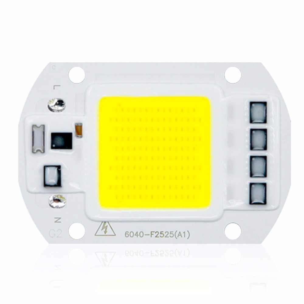 LED COB Lamp 10W 20W 30W 50W Real AC 220V 230V IP65 Smart IC DIY LED Bulb Flood Light Spotlight For Projectors Driver Light