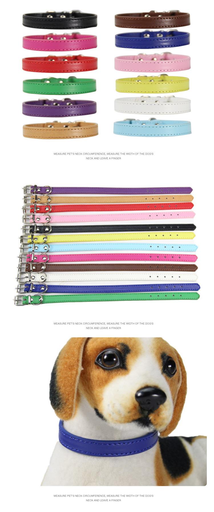 Collares de colores suaves para perros 4