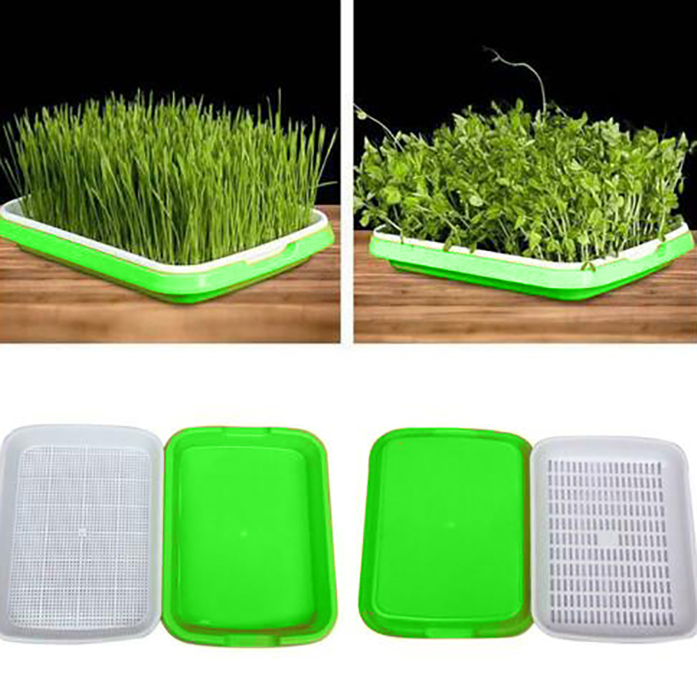 Sprouter Nursery Tray Double-layer Soilless Culture Beans Hydroponic Nursery Tray Hidroponia  Seedling Tray Garden Supplies
