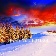 Snow-covered trees 8'x8′ CP Computer-painted Scenic Photography Background Photo Studio Backdrop DT-11-236