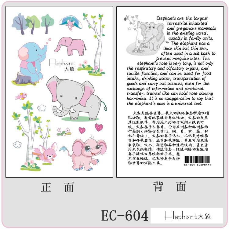 EC-604