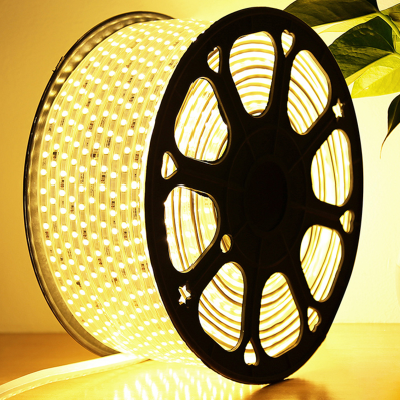 LED Strip 5050 SMD light 96Led/m, 220V,White,Warm White,Red,Green,Blue,Yellow,Waterproof