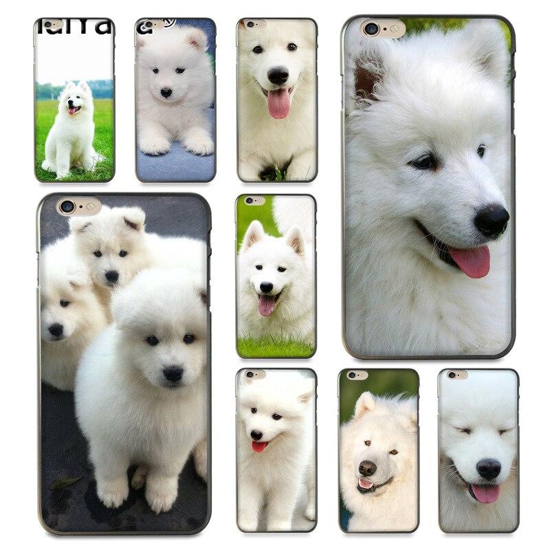 Maiyaca Animal Dog Samoyed Puppy Top Detailed Popular Phone Case For