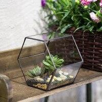 Desktop Geometric Hexagon Glass Terrarium Vertical Garden Bonsai Terrarium Succulent Plant Planter Indoor Flower Pot Flowerpot