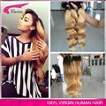 Ombre 2 Tone Brazilian Hair Body Wave Ombre Brazilian Hair Weave Bundles With Closure T 1b 27 Hair Extensions Free Shipping