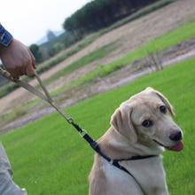 Military Police Dog Training Leash