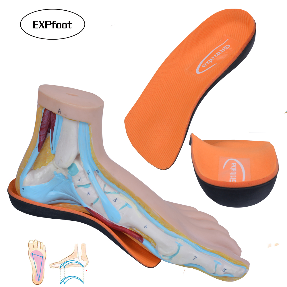 New arrival Premium 3/4 Orthotics High Arch Support Insoles 3D Hard EVA Arch Support for Flat Foot Plantar Fasciitis and Spur 01