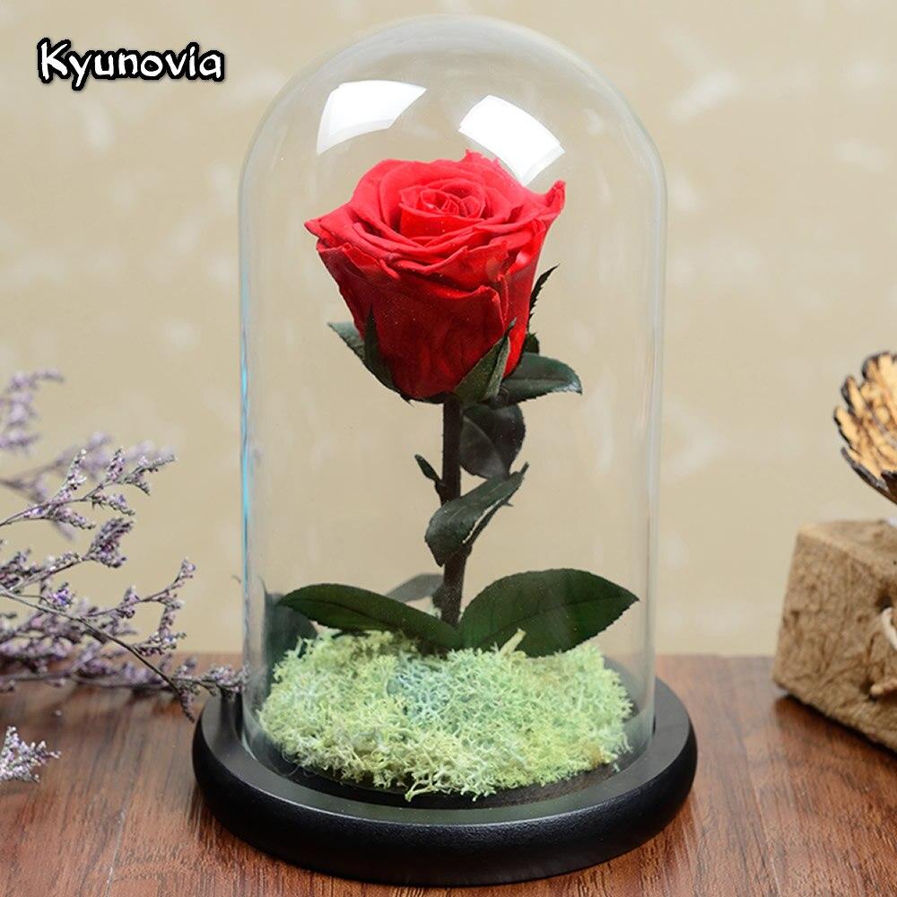 Kyunovia Día de San Valentín Regalo de Cumpleaños real rosa roja flor fresca conservada rosas decoración del hogar Pequeño Príncipe Rose KY107