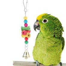 Colorful Parrot Toy with Bell