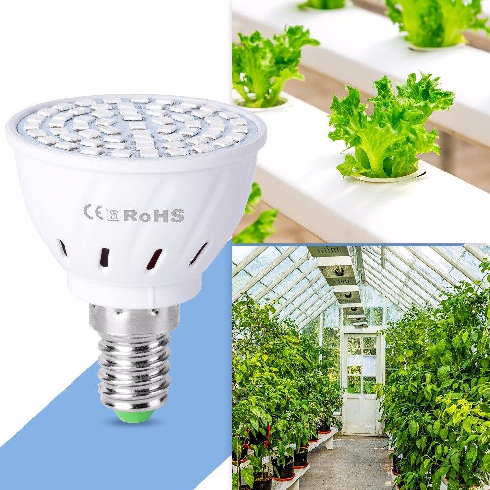 E14 Hydroponics Fito Lamp GU5 3 Led Full Spectrum GU10 Grow Led Light For Seedlings 220V E27 Indoor Growbox Bulb B22 luz plantas in LED Grow Lights from Lights Lighting