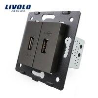 Livolo EU Standard DIY Parts Plastic Materials Function Key Black Color 2 Gang For USB Socket