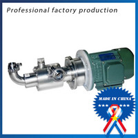 CG15 1 0.37 Type DC12V Stainless Steel Screw Pump for Honey and Jam