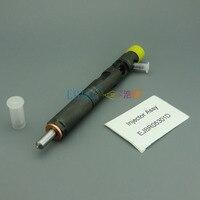 Injetor r05301d do crin de liseron erikc  injetor comum diesel ejbr05301d do trilho para yuchai f50001112100011