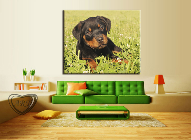Aliexpress.com : Buy 1 pieces / set canvas Art new Cute Dogs Animals ...