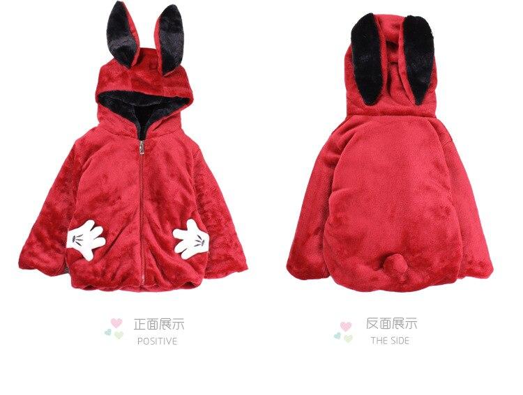 Rabbit_04