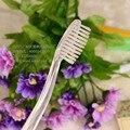 free shipping Hotel disposable toothbrush toothpaste Zanthoxylum nitidum Kit Inn one dental room supplies