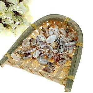 1 bolsa (30g), acuario, pecera pequeña, artesanía Natural DIY, concha de mar, paisaje, decoración del hogar, estilo aleatorio