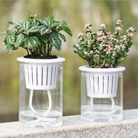 5 pçs/set Absorção Rodada de Plástico Transparente Flor Hidropônica Vaso de Flores Rega Automática Auto Plantadores de Resina Vaso de Suculenta