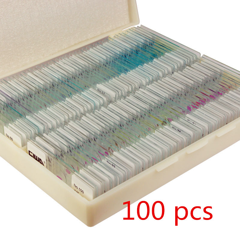 Plant and Animal Samples for Biological Microscopy Student Science Experimental Supplies Plant Cell Slices Experimental Slides