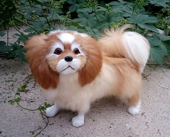 big real life pekingese dog model plastic&furs natural colour dog doll gift about 30x7x25cm xf1624